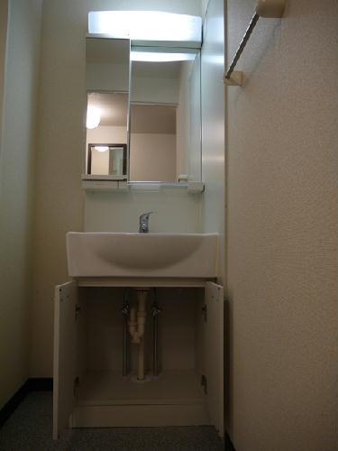 レオネクストジェマーレ大網 102号室の洗面所
