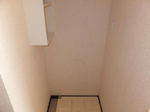 レオネクストウテナ 101号室の収納