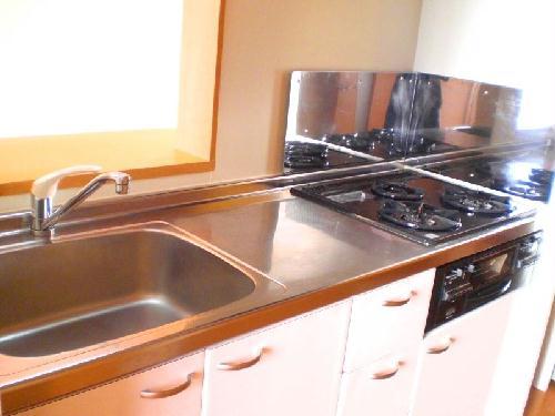 レオパレスラ グレージュ 206号室のキッチン