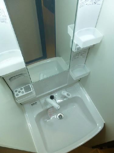 レオネクストシルクⅡ 203号室の洗面所