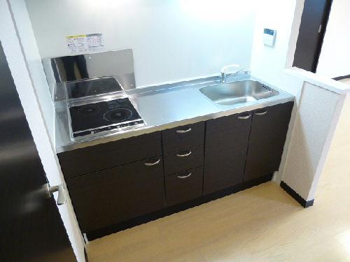 レオネクストシルクⅡ 203号室のキッチン