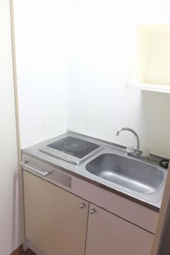 レオパレスさくらはうす 110号室の風呂