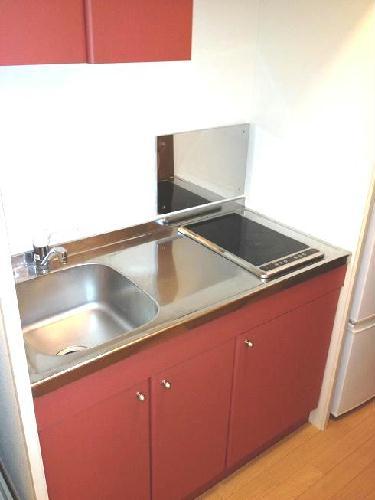 レオパレスグリーンバレー内谷 203号室のキッチン