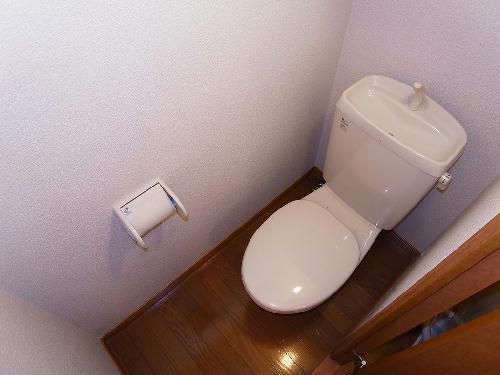 レオパレス西尾いまがわ 208号室のトイレ