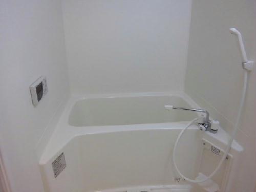 レオネクストクラジヤイ 114号室の風呂