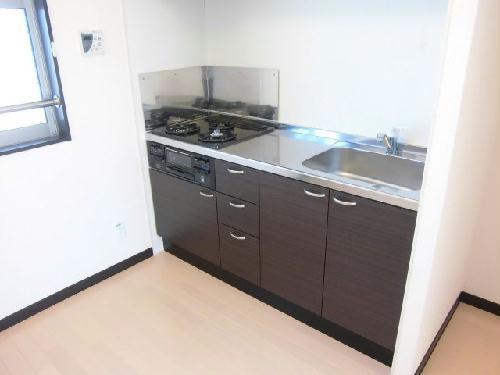 レオネクストスイートピー 102号室のキッチン