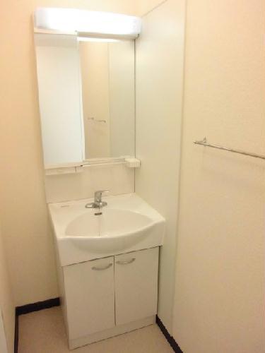 レオネクストスイートピー 102号室の洗面所