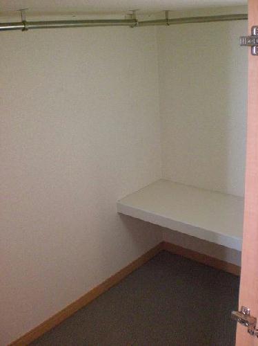 レオパレスリバーヴィレッジM 106号室の収納