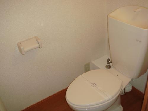 レオパレスMINA 208号室のトイレ