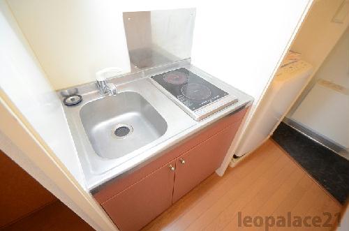 レオパレスMajesty22 203号室のキッチン