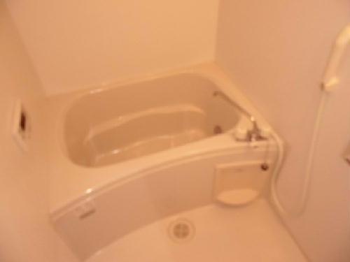 レオネクストネイチャー 104号室の風呂