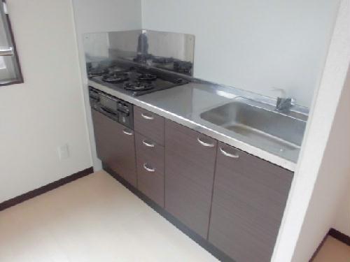 レオネクストネイチャー 104号室のキッチン