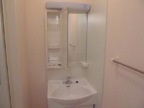 レオネクストネイチャー 104号室の洗面所
