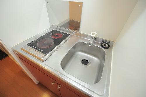 レオパレスエアポートビュー 202号室のキッチン