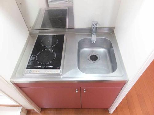 レオパレスフローラ 203号室のキッチン