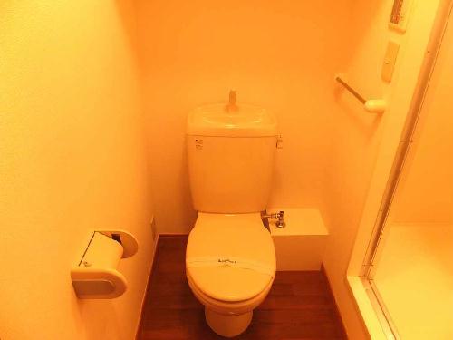 レオパレスファウィステリアⅡ 208号室のトイレ