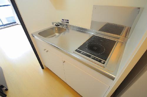 レオネクストエスベランサ 110号室のキッチン