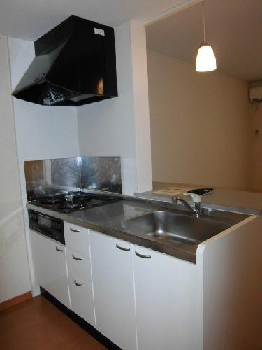 レオパレスノワール Ⅱ 306号室のキッチン