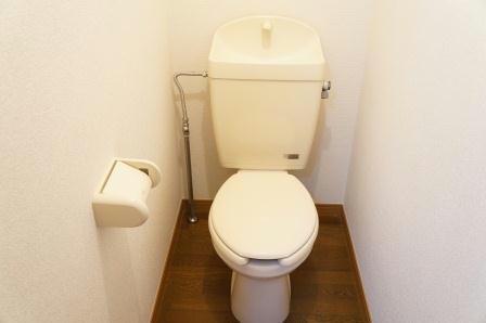 レオパレスノクターン 204号室のトイレ