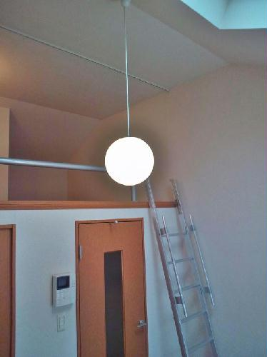 レオパレスAMANO 201号室の居室