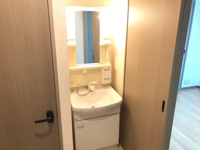 ハイツ河合 00103号室の洗面所