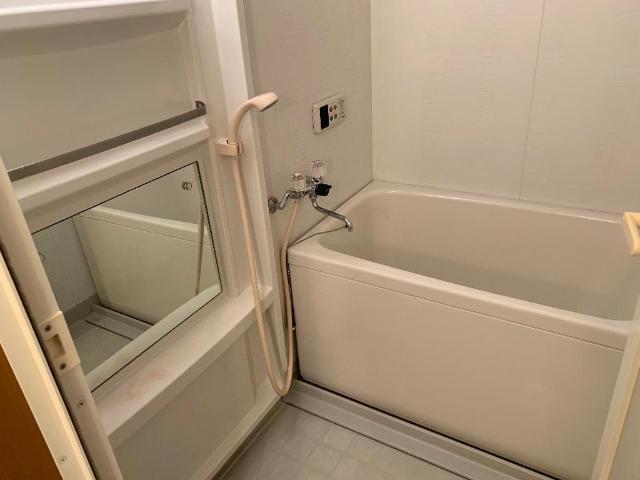 レジデンス花水木 205号室の風呂