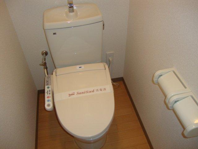 Sun Green M 305号室のトイレ