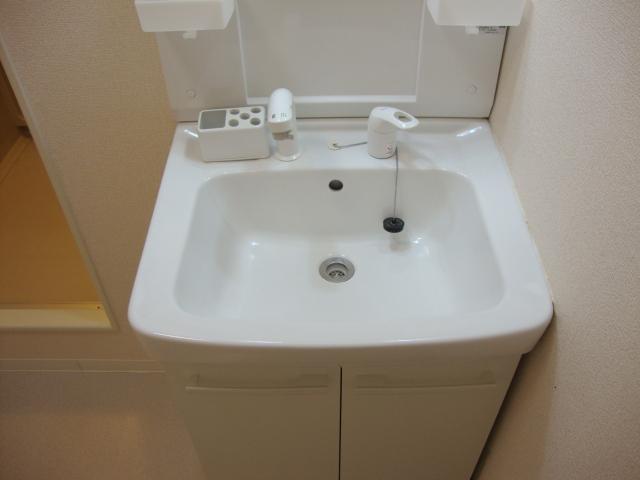 ワイズハウス星の宮 00202号室の洗面所