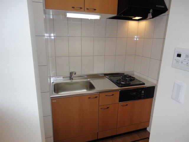 グランチェスタⅢ 105号室のキッチン