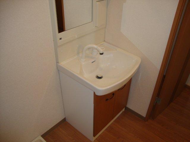 メゾンコンフォース 202号室の洗面所