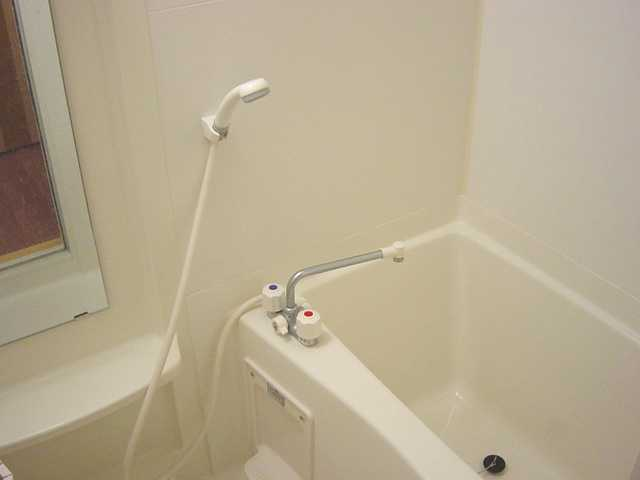 パルティールY 00102号室の風呂