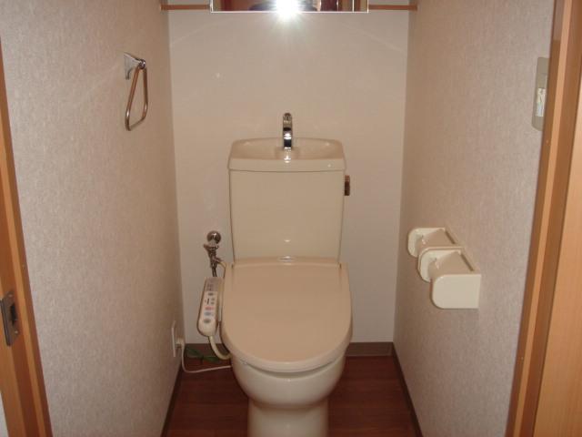 グリルス Ⅰ 203号室のトイレ