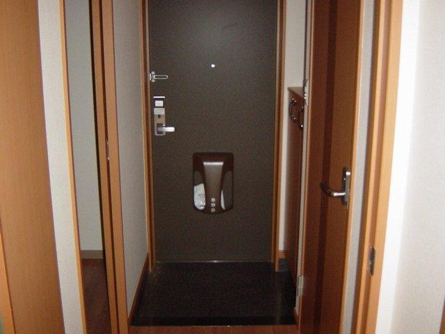 グリルス Ⅰ 203号室の玄関