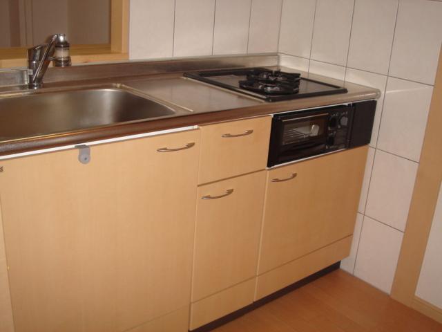 グリーンガーデン 101号室のキッチン