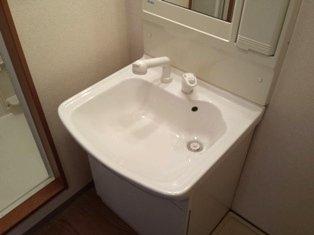 アルカディア 105号室の洗面所