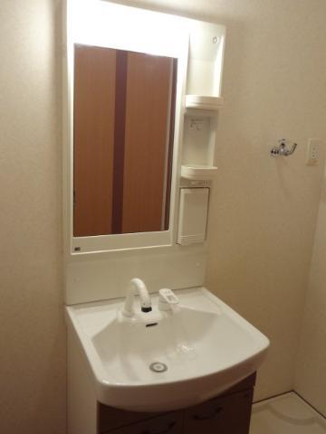 シャトレひだまり 102号室の洗面所