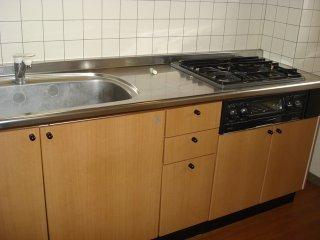 ジュエル壱番館 201号室のキッチン