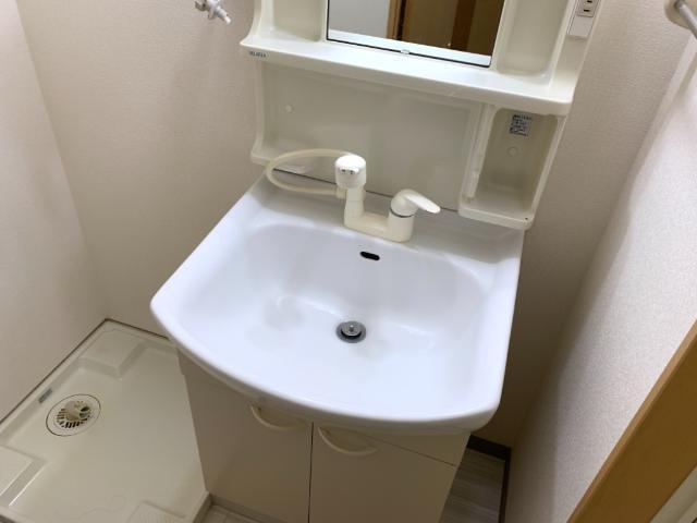 OPUS ONE 302号室の洗面所