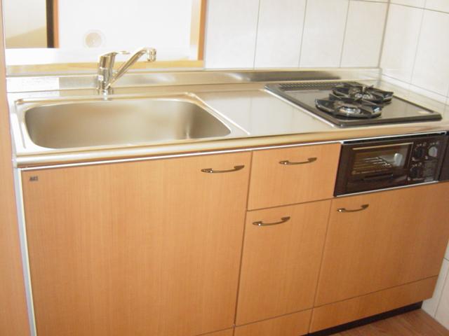 フェリシティ 101号室のキッチン