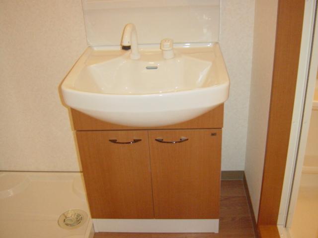 フェリシティ 101号室の洗面所