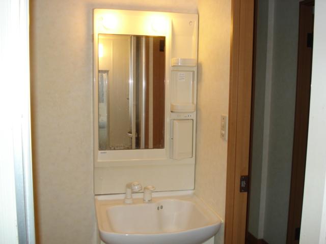 カーサグランデ 105号室の洗面所