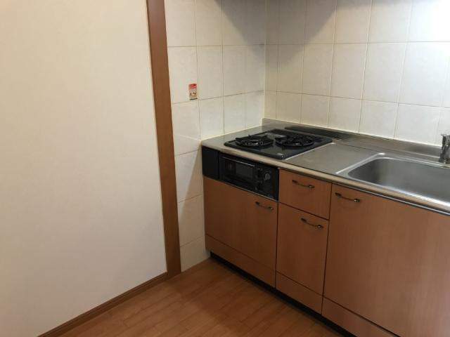 ルミナス五月 101号室のキッチン