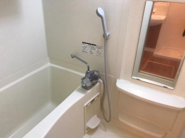 ルミナス五月 101号室の洗面所
