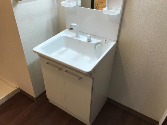 アメニティハイム・K 201号室の洗面所