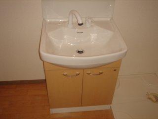 アーバン ルピナス 103号室の洗面所