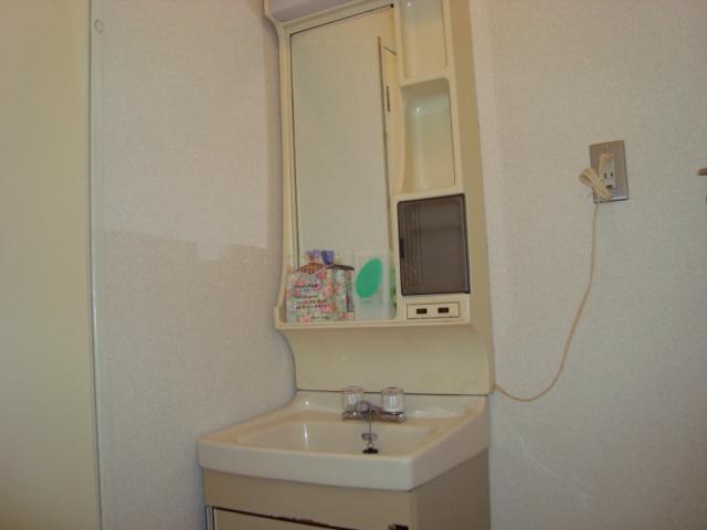 ゴールデンドーン 205号室の洗面所