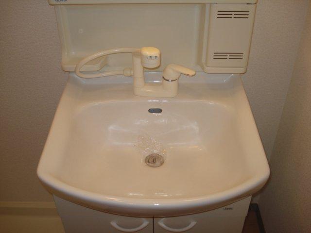プチ キャッスル 201号室の洗面所