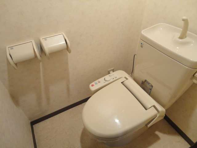 コンフォート雅 303号室のトイレ