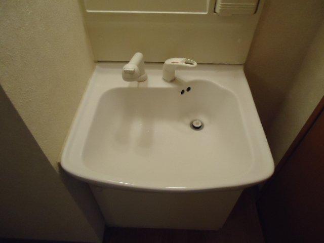 フォレスト粕川 B棟 101号室の洗面所