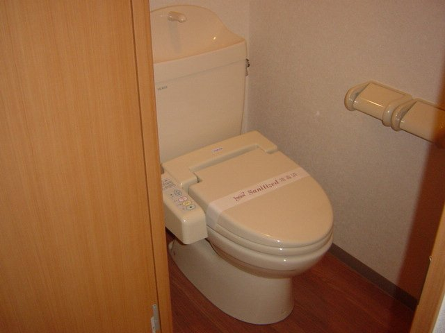 ブルーサンズ セントラル 203号室のトイレ